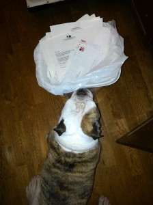 Beatrix helps me take out the trash.